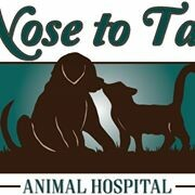 Nose to Tail Animal Hospital