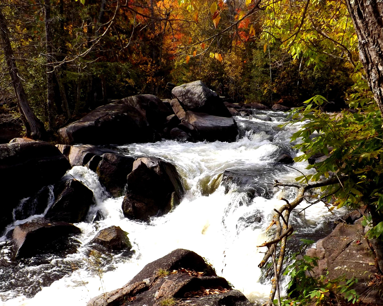 Explore Florence County » Tourism » Wild Rivers Tour